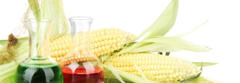 Llegan los biocombustibles de tercera y cuarta generación